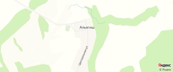 Карта деревни Альягиша в Башкортостане с улицами и номерами домов
