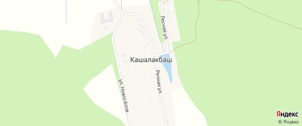 Улица Новоселов на карте хутора Кашалакбаша с номерами домов