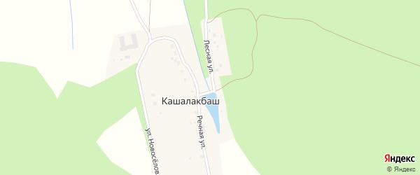 Лесная улица на карте хутора Кашалакбаша с номерами домов