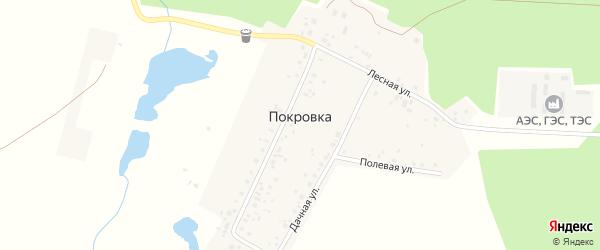 Улица Кулакова на карте деревни Покровки с номерами домов