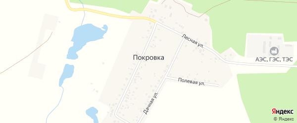 Центральная улица на карте деревни Покровки с номерами домов