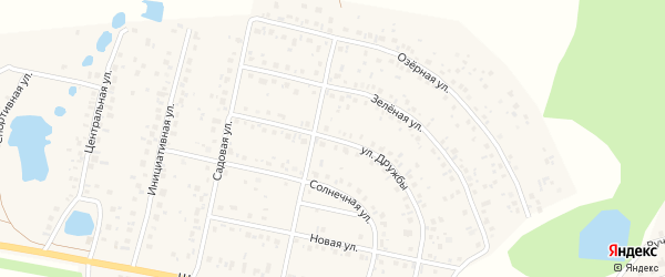Улица Дружбы на карте деревни Дорогино с номерами домов