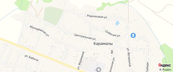 Центральная улица на карте села Карамалы с номерами домов