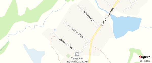 Молодежная улица на карте села Старого Мутабаша с номерами домов