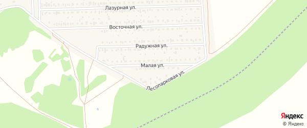 Малая улица на карте деревни Дорогино с номерами домов