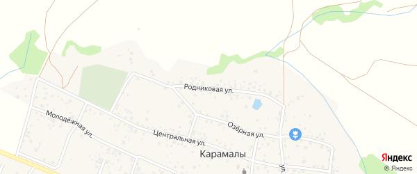 Родниковая улица на карте села Карамалы с номерами домов