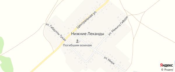 Центральная улица на карте деревни Нижние Леканды с номерами домов