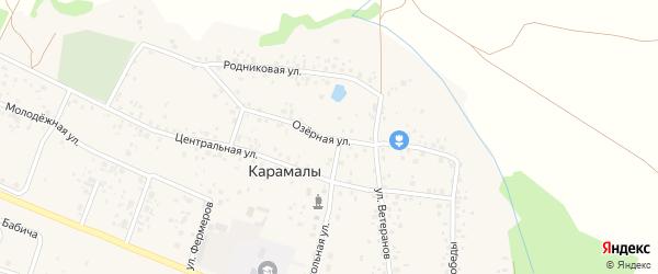 Озерная улица на карте села Карамалы с номерами домов