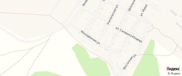 Молодёжная улица на карте села Новоаптиково с номерами домов