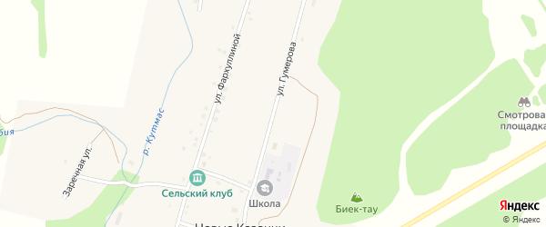Улица Гумерова на карте деревни Новые Казанчи с номерами домов