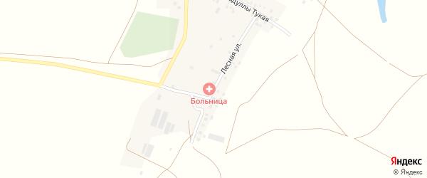 Лесная улица на карте деревни Татарского Нагадака с номерами домов