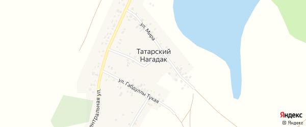 Улица Мира на карте деревни Татарского Нагадака с номерами домов
