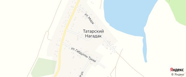 Зеленая улица на карте деревни Татарского Нагадака с номерами домов