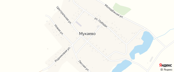 Южная улица на карте деревни Мукаево с номерами домов