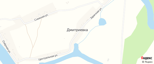 Центральная улица на карте деревни Дмитриевки с номерами домов