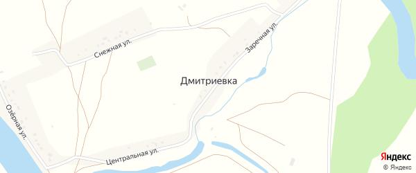 Лесная улица на карте деревни Дмитриевки с номерами домов