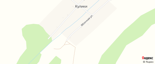 Яблочная улица на карте деревни Кулики с номерами домов