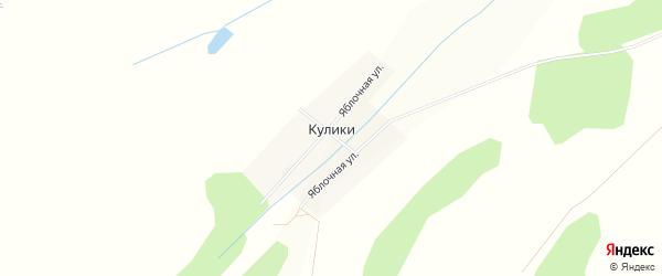 Карта деревни Кулики в Башкортостане с улицами и номерами домов