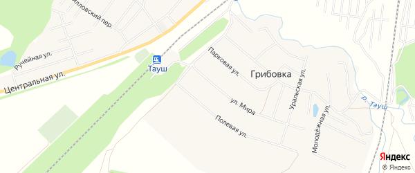 Карта деревни Тауша в Башкортостане с улицами и номерами домов