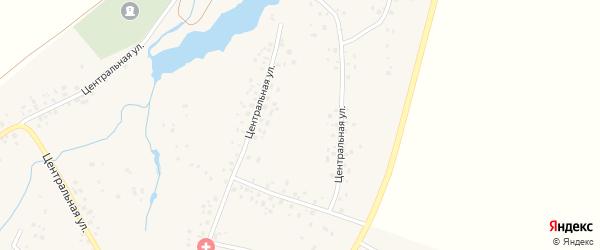 Центральная улица на карте села Турбаслы с номерами домов