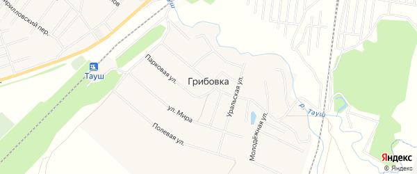 Карта деревни Грибовки в Башкортостане с улицами и номерами домов