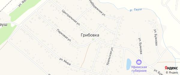 Приозерный переулок на карте деревни Грибовки с номерами домов