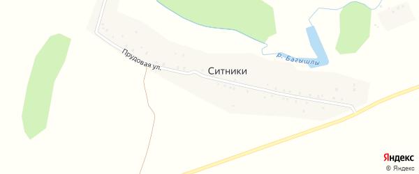 Прудовая улица на карте деревни Ситники с номерами домов