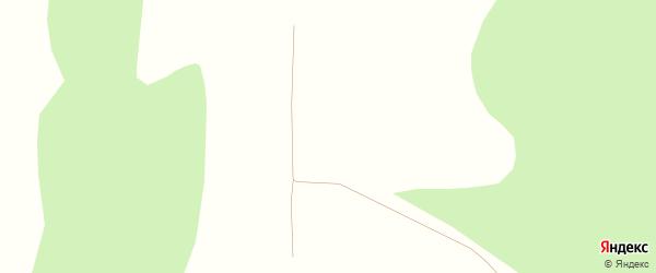 Лесная улица на карте деревни Аркаула с номерами домов