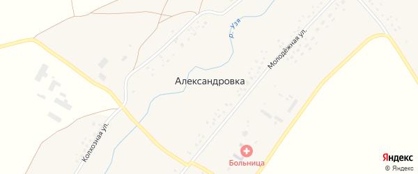 Колхозная улица на карте села Александровки с номерами домов