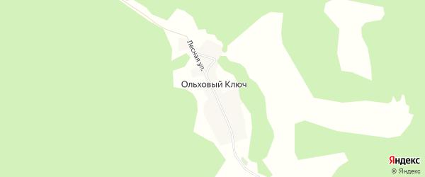 Карта деревни Ольхового Ключа в Башкортостане с улицами и номерами домов