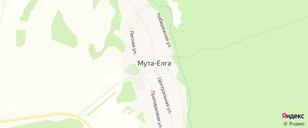 Карта деревни Муты-Елги в Башкортостане с улицами и номерами домов