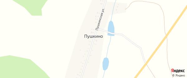 Пушкинская улица на карте деревни Пушкино с номерами домов