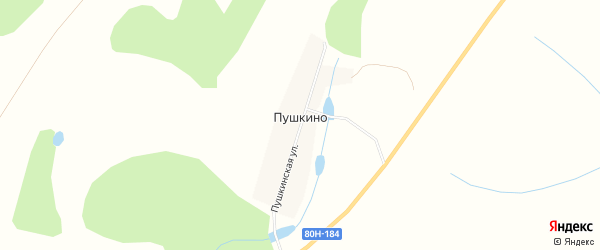 Карта деревни Пушкино в Башкортостане с улицами и номерами домов