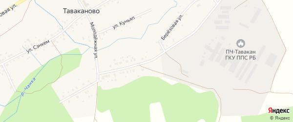 Березовая улица на карте деревни Таваканово с номерами домов