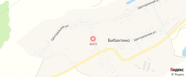 Центральная улица на карте деревни Бибахтино с номерами домов