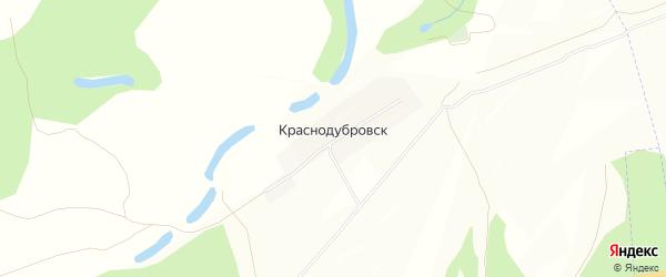 Карта деревни Краснодубровска в Башкортостане с улицами и номерами домов