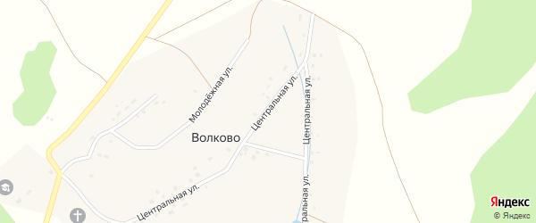 Молодежная улица на карте села Волково с номерами домов