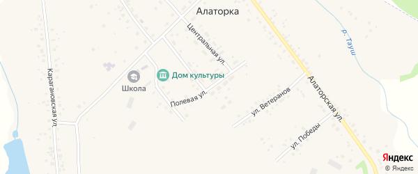 Полевая улица на карте села Алаторка с номерами домов