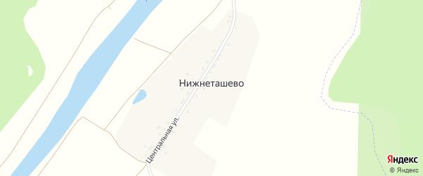 Центральная улица на карте деревни Нижнеташево с номерами домов