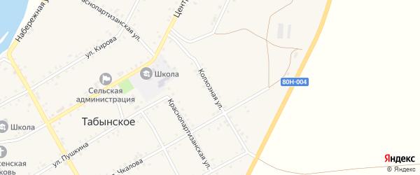Колхозная улица на карте Табынского села с номерами домов