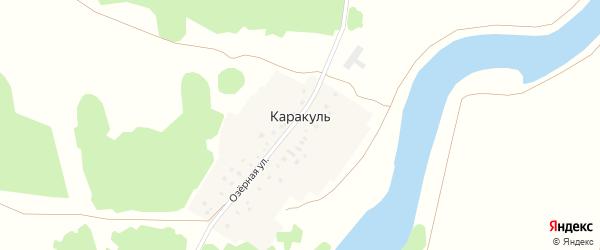 Озерная улица на карте деревни Каракуля с номерами домов