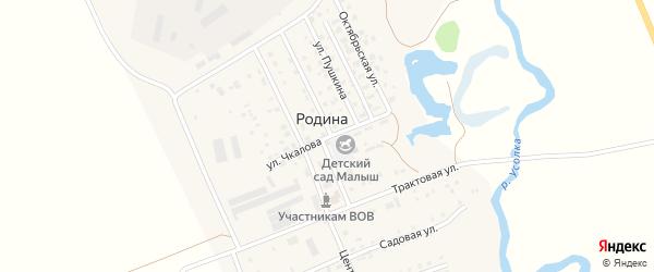Улица Чкалова на карте села Родиной с номерами домов