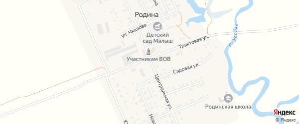 Центральная улица на карте села Родиной с номерами домов