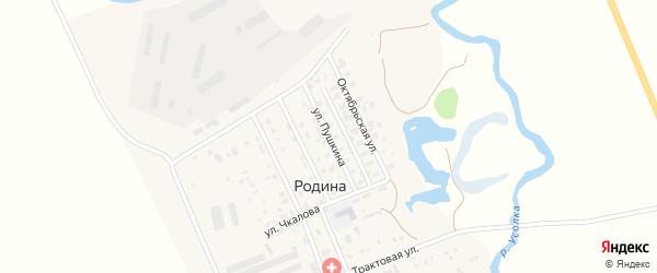 Улица Пушкина на карте села Родиной с номерами домов