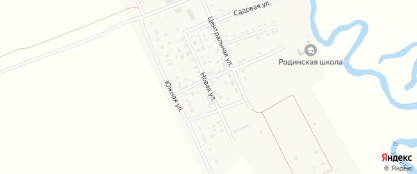 Новая улица на карте села Родиной с номерами домов