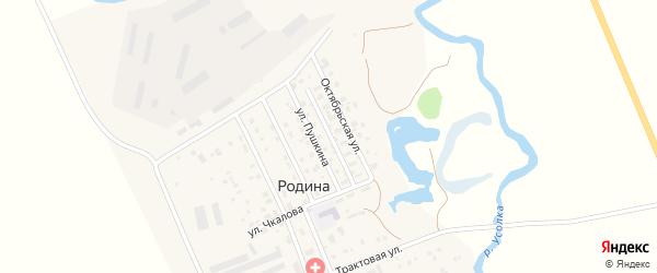 Колхозная улица на карте села Родиной с номерами домов