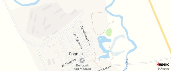 Октябрьская улица на карте села Родиной с номерами домов
