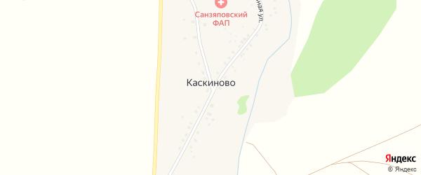 Центральная улица на карте деревни Каскиново с номерами домов