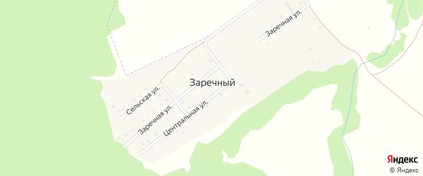 Береговая улица на карте деревни Заречного с номерами домов