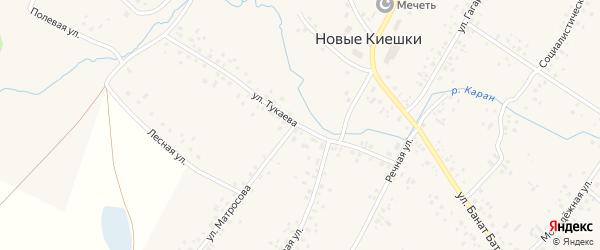Улица Тукаева на карте села Новые Киешки с номерами домов